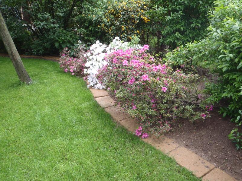 Giardino Mattoni Tufo : Mattoni tufo giardino mattoni tufo per giardini mattoni faccia